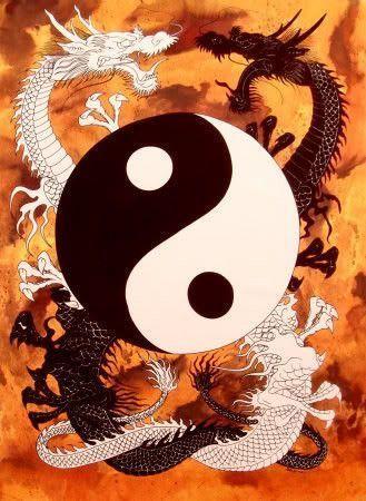 Yin & Yang 007